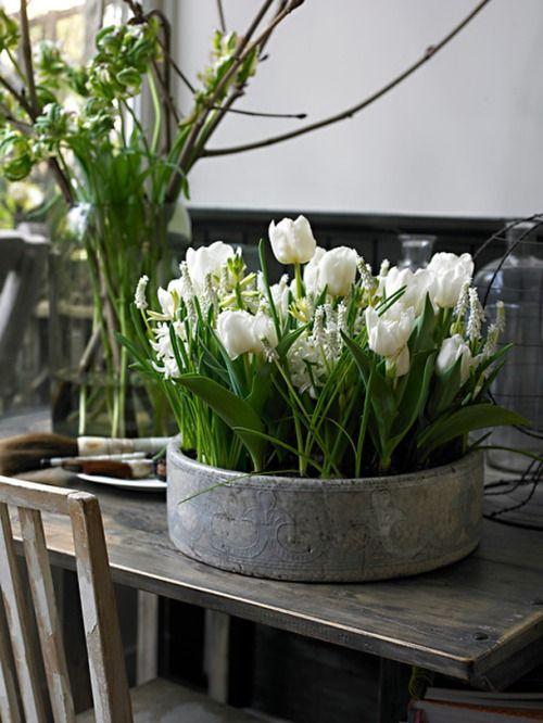 Paprasti būdai dekoruoti Vėlykų stalą